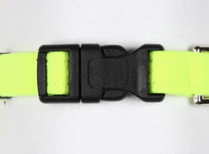 quick release plain dog collar