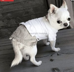 Linen Skirt by Louisdog