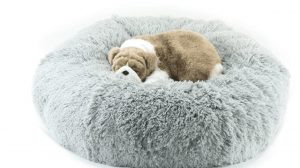 shag bed by susan lanci