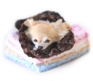 snuggle pups sleeping bags