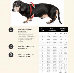 buddy belt size chart