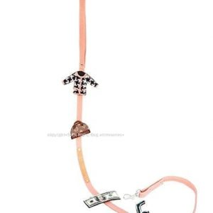 designer leash for a real fashionista
