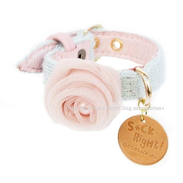 designer collar babyboomer