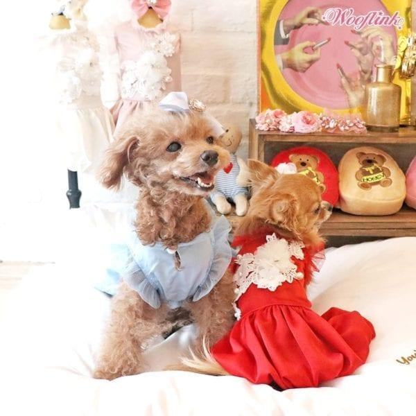 royal wedding by wooflink