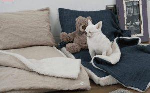 goose heaven pillow by louis dog