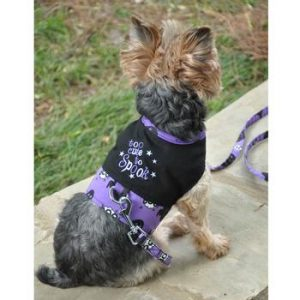 too cute to spook harness