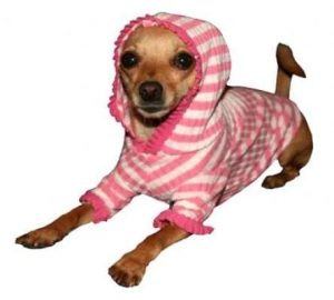 pink stripe cherry hoodie