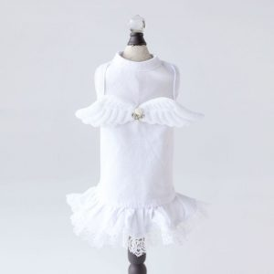 lil angel dress