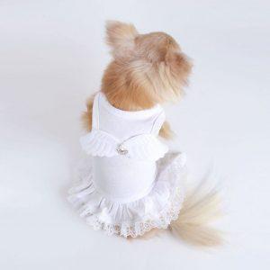 lil angel dress