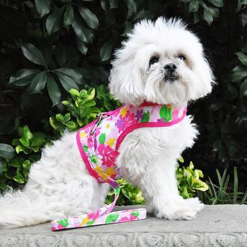 Pink Hawaiian Dog Harness by doggie design