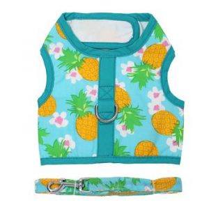 Pineapple Luau Harness