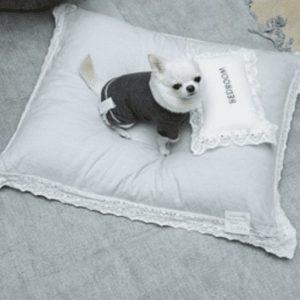Classy Cushion by Louisdog