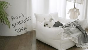 Saturday Sofa by Louisdog