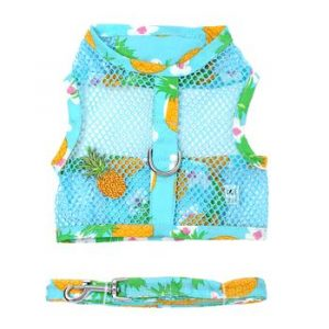 Pineapple luau mesh harness