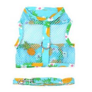 Pineapple luau mesh harness
