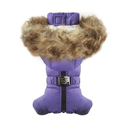 puppy angel ow382 purple