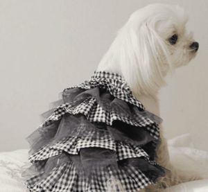 Check Cancan Dress by Puppy Angel