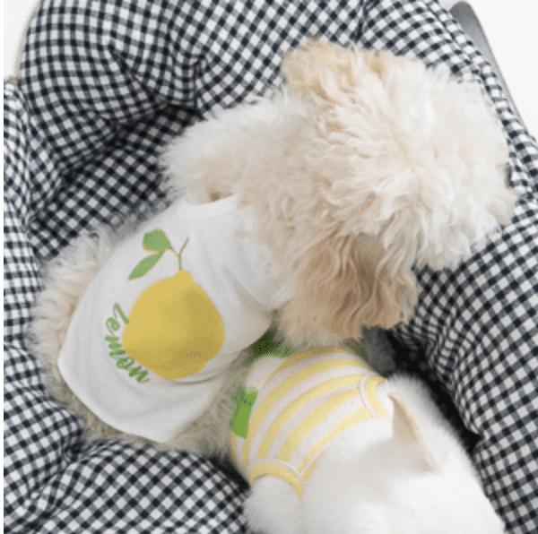 Fruits Top by Louisdog