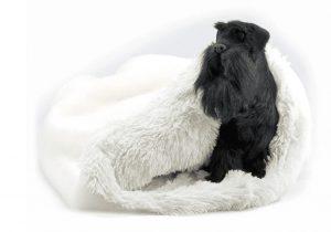 cream with cream shag cuddle bed