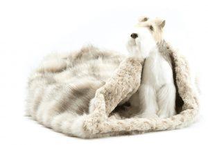 cream fox with carmel curly cuddle bed