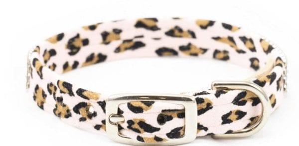 2 Row Giltmore Cheetah Collar