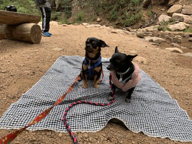 picnic mat at seven falls