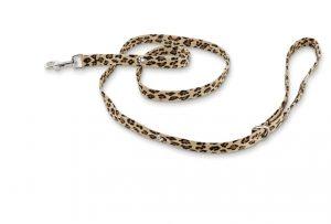 crystal paws leash