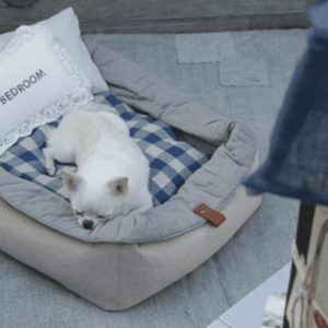 viva house by louisdog