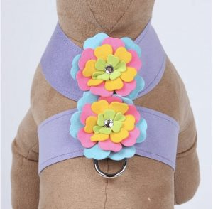 fantasy flower tinkie harness