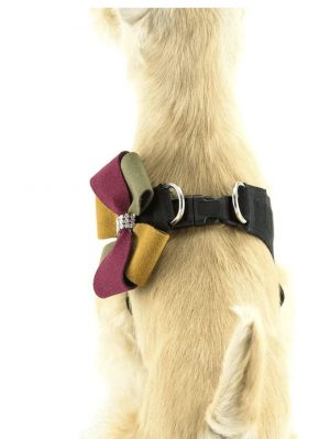 autumn step-in harness