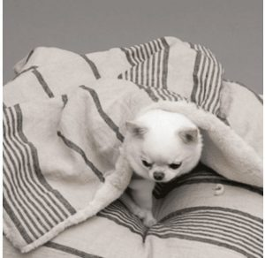 linen stripes dog blanket