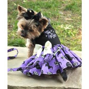 Too Cute To Spook Dress