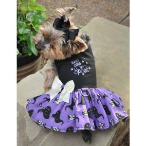 Too Cute To Spook Dress