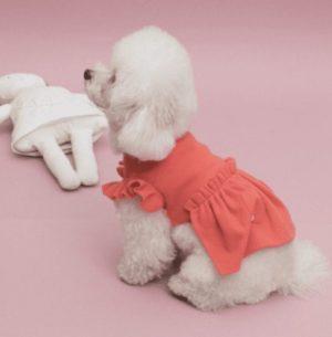 margaux dress by louisdog