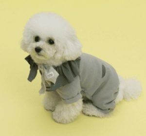 Oscar Dog Romper by Louisdog in Grey (accessories on dog sold separately)