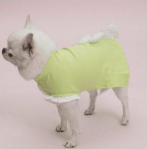 Ribbon Sleeveless Dog Tee in Sunny Lime