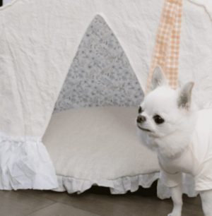 BOHO Peekaboo Dog Bed in Blush