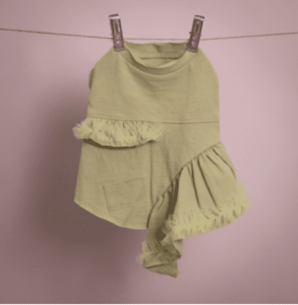 Vera Dog Dress in Lime