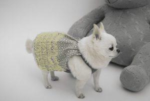 ShaSha Dog Dress