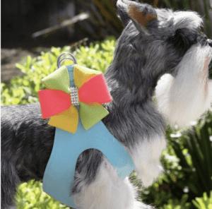 Angela Step In Safe Dog Harness