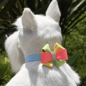 Angela Dog Collars
