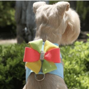 Angela Tinkie Dazzling Dog Harness