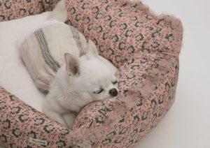 Bahama Linen Dog Top