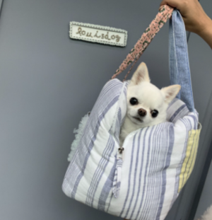 linenaround dog bag with glitter in 2 styles