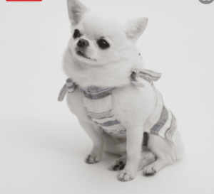 glitter linen dog shirt