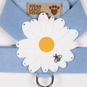 large daisy tinkie dog harness