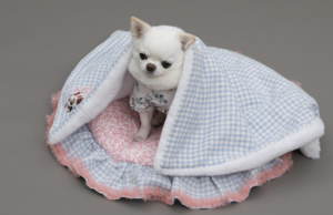 liberty patchwork dog blanket