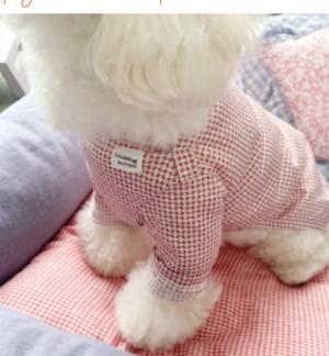 Alda Streamline Dog T-shirt