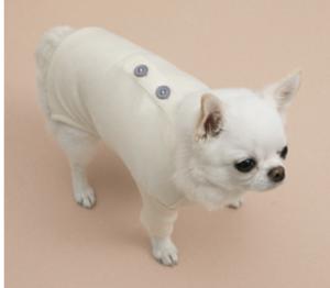 button dog t-shirt