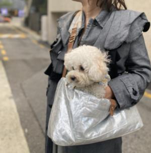 Shine Sling Bag
